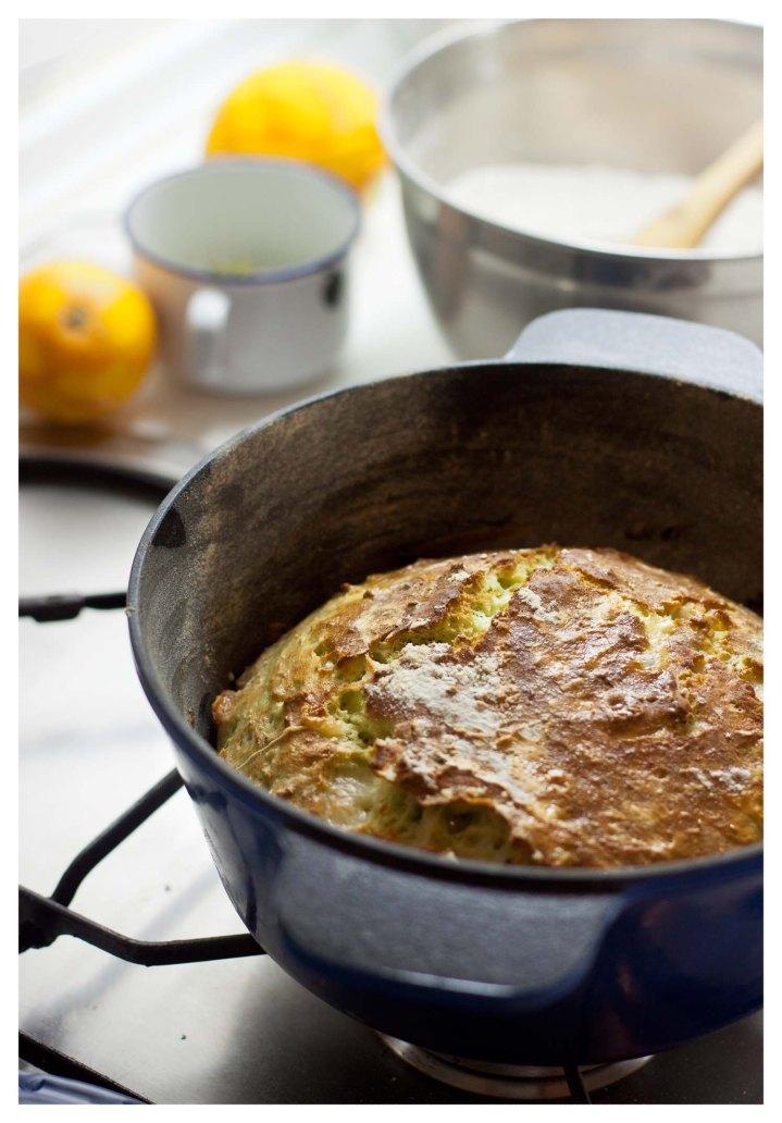 Preoces Pan italiano 4